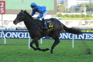 Sydney Cup Results 2014 – The Offer wins Group 1