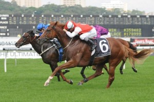 Lightinthenite Wins 2015 Darwin Cup
