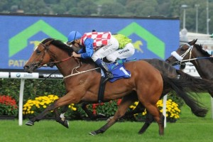 Australian Oaks odds favoured a win by Streama in 2012.