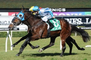 Testashadow has been scratched from the Group 1 Australian Guineas due to a wide barrier.