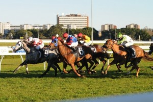 Pretty Pins (outside) has been confirmed to line up for the 2014 BRC Chairman's Handicap