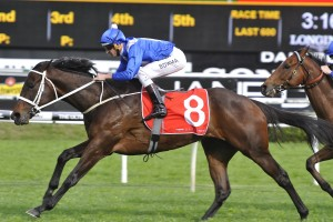 George Main Stakes betting odds at Ladbrokes.com.au