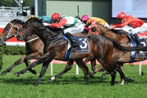 2016 Missile Stakes Tips and Betting Preview
