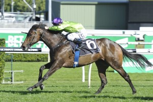 Flight Stakes winning tips online - Ladbrokes.com.au