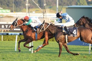 Junoob secures tight victory in Metropolitan Handicap ahead of Opinion & Araldo. Photo: Steve Hart.