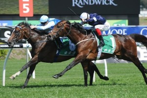Honorios survived a late charge from Masked Marvel to win the Craven Plate at Royal Randwick this afternoon.