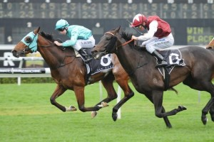 Fat Al Wins 2012 Epsom Handicap – Race Results