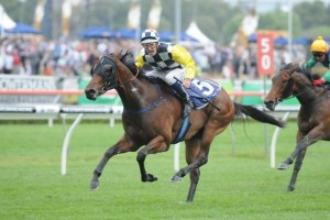Co-trainer James Cummings has revealed Norzita is likely to contest the 2014 Epsom Handicap during her spring preparation