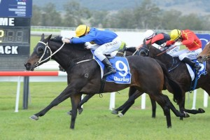 Divertire wins the 2015 Dark Jewel Classic at Scone