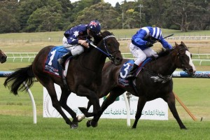 Haybah (inside) will have her Group level chance in the Chairman's Stakes at Sandown.