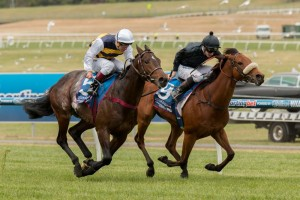Epingle (inside) will likely back up from the Zipping Classic to the Ballarat Cup.