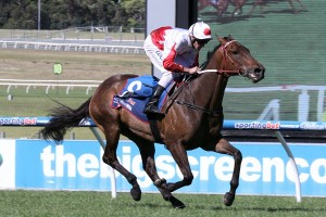 2016 RA Lee Stakes Tips and Betting Preview