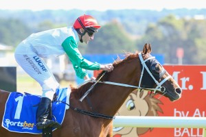 Junoob Tops Tight 2016 Wyong Gold Cup Field & Odds