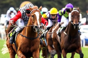 Akzar is outright favourite for success in betting markets for the 2014 Eagle Farm Cup