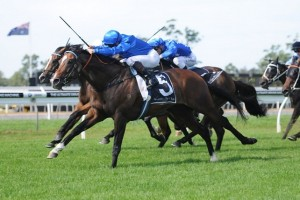 Contributer held on to win the Group 1 Chipping Norton Stakes at Warwick Farm.