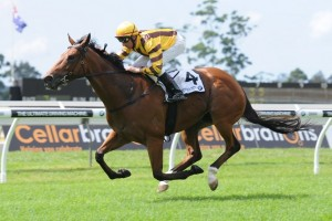 Trainer Joe Pride has confirmed a barrier trial for Steps In Time ahead of the 2014 Tattersall's Tiara