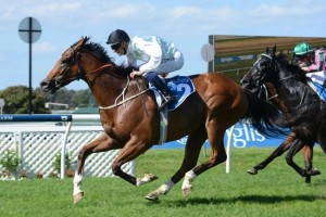 Persistent rain at Randwick has put Monton's Villiers Stakes run in jeopardy.