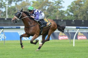 Permit continues to headline the Christmas Cup field after four horses failed to accept for the race.