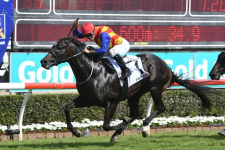Pierata chasing huge payday in 2018 Magic Millions 3yo Guineas