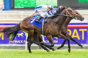 Dissident in equal favourite and clear market mover for the 2014 Rosehill Guineas