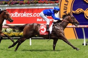 Cohesion stamped himself as a serious Blue Diamond Stakes contender on Tuesday. Photo: Ultimate Racing Photos