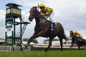 Bel Sprinter leads the nominations for the 2015 Oakleigh Plate.