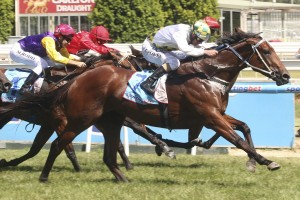A Time For Julia has been confirmed in the final field for the 2014 Robert Sangster Stakes