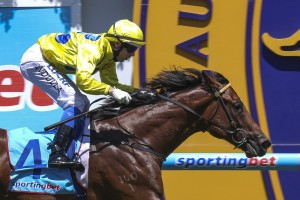 Rubick is the drifting favourite in the 2014 Blue Diamond Stakes betting.