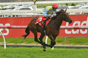 Booker, above, led all of the way to win the Kevin Hayes Stakes at Caulfield. Photo by Ultimate Racing Photos.