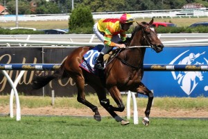 Lankan Rupee enjoyed an exhibition gallop at Caulfield one week prior to the Black Caviar Lightning Stakes.