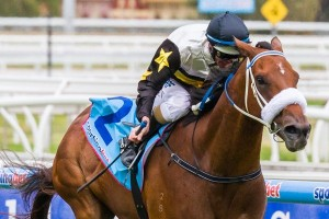 Futurity Stakes odds on 2014 winner Moment Of change were short