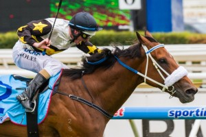 Moment Of Change is in a much better position to win the Winterbottom Stakes than last year when he finished second, according to trainer Peter Moody.