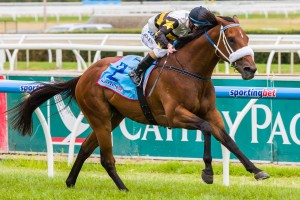 Moment Of Change has been allocated the ideal barrier 4 for the 2014 Winterbottom Stakes. Photo: Race Horse Photos Australia