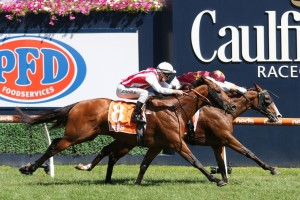 Streets Of Avalon, above on the inside with the blinkers and a maroon cap, scored an all the way win in the 2020 Futurity Stakes at Caulfield. Photo by Ultimate Racing Photos.
