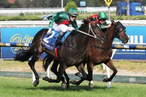 William Pike (pictured on Escado, inside, at Caulfield)