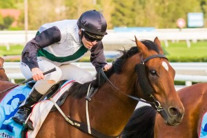 Apprentice jockey Kayla Nisbet is confident in the chances of Pago Rock in the 2014 The Goodwood