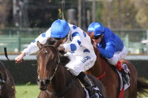AD Hollindale Stakes Results 2018: Oregon's Day Wins Ahead of Doomben Cup