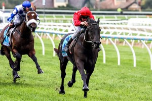 Trainer Mick Price has confirmed Pressing will continue towards an appearance in the Group 1 J.J. Atkins
