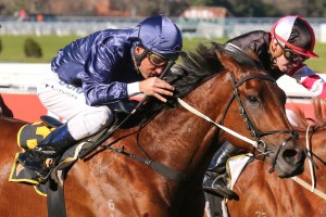 2017 Coolmore Stud Stakes Option for Lone Eagle
