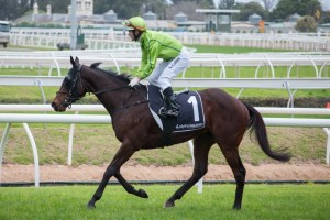 Ipswich Cup Winner Self Sense Onto Caloundra Cup 2017