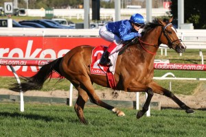 Hartnell, above, will now head to Flemington for the Makybe Diva Stakes. Photo by Ultimate Racing Photos.
