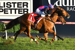 Brave Smash ran second to Vega Magic, above, in the Regal Roller Stakes at Caulfield. Photo by Ultimate Racing Photos.