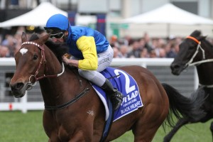 Black Heart Bart, above, is equal favourite for the Railway Stakes at Ascot. Photo by Ultimate Racing Photos.