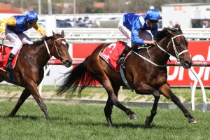 2016 Cox Plate Odds and Betting Update