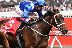 Winx, above, has drawn the rails in the George Main Stakes at Randwick.  Photo by Ultimate Racing Photos.