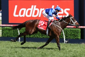 Winx, above, is spot on for her return to the race track in the 2018 Winx Stakes at Randwick. Photo by Ultimate Racing Photos.