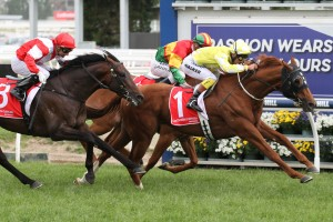 Criterion was too good for a talented field in the 2015 Caulfield Stakes. Photo: Ultimate Racing Photos