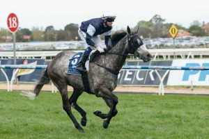 Fawkner continues to lead the Cox Plate betting after drawing barrier four.