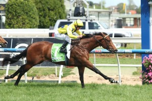 Rubick has beaten a classy field to the line in the Group 2 Schillaci Stakes. Photo: Race Horse Photos Australia