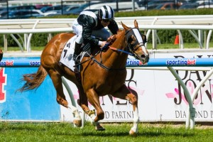 Missy Longstocking is set to contest the 2015 Rubiton Stakes second-up. Photo: Race Horse Photos Australia